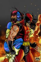 Wolverine and Mystique by SplitQDesign