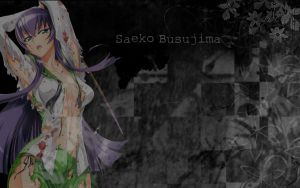Saeko Busujima Sexy Wallpaper by xIllusory