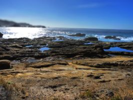 Spanish Bay CA S5 by nyann