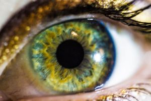 Eyeball macro 1 by adamchris1992