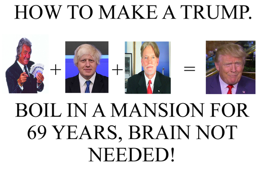 How To Make A Trump by ANTI-SYSTEM