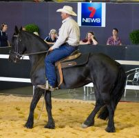 STOCK - 2014 Total Equine Expo-45 by fillyrox