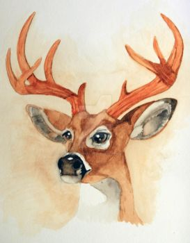 White Tailed Deer Portrait by PegasusHollow
