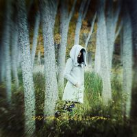 lost green by incisler