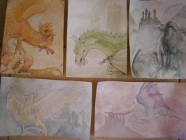 A collection of dragons by Midnyt-Moonlight