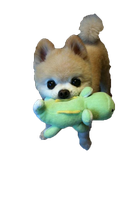 Perrito png by CosgroverAddicted