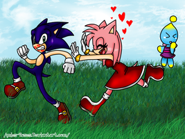 75DC: CE: Day: Another Day... [Sonamy] by icefatal