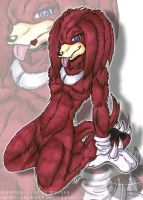 Knuckles is Hawt by DCWyverx