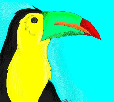 Toucan for ChiroOokami -4th- by Cazya