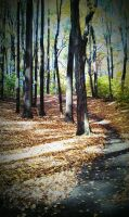 Disc Golf Hole 15 in the Fall by PrYmO-ART