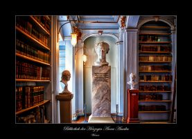 The Library of Anna-Amalia 2 by calimer00
