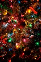 Oh Christmas Tree by tinfire
