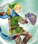 Link - Hyrule Warriors by ricecakepanda