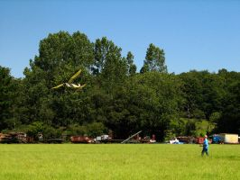 rc flying by smevstock