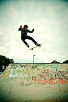 skateboarding: fly by samrizzo