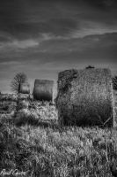 Hay! Black and White by chivt800