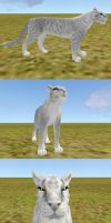 2x FELINE TEXTURE + eye texture SALE by 7KnoX