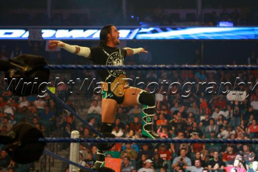CM Punk Cult of Personality WWE Theme Song Download