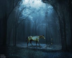 The Enchanted Forest...And The Rose of Life by ArielKJ