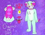 Charms Ref by Ink--Beast