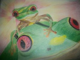 Shattered Glass Frogs by randomgirl3