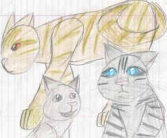 The Three by RockpeltThunderClan