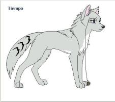 Tiempo the wolf by Bluefoxyz