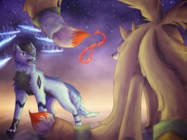 Battle of Fire and Ice by TheDogzLife