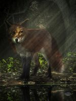 Fox in the Deep Forest by deskridge