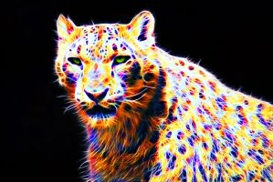 Colorful leopard XI by megaossa