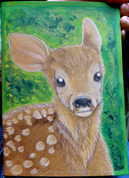 Fawn Sketchbook Cover by RonTheWolf