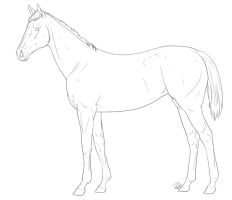 Thoroughbred Lineart by RochelleRoberts