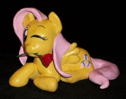 FIM FLUTTERSHY with Rose by MadPonyScientist