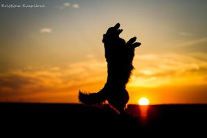 Dancing in the sunset by KristynaKvapilova