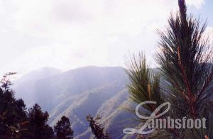 Bontoc's Mountains by lambsfoot