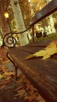 Shhh...the fall is coming... by Wicked-Lexie