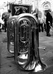 big brass ! by DegsyJonesPhoto