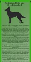 Australian Night Cur - Breed Standard by NightCur