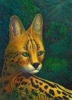 Serval's portrait - ultimate version, oils, 2010 by AldemButcher