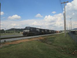 NS 9599, NS 9471, NS 8412, and NS 8871 by 2001-ACsiren