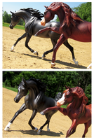 Breyer - Impetuous by The-Toy-Chest