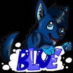 Blue Badge by Michibu