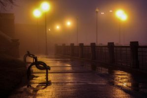Foggy Night Along the River by shelbicg