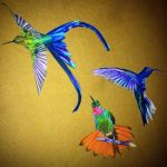 Hummingbird collection by CalliopeHoop