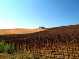 tuscany10 by rEcipok
