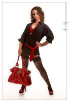 Red Handbag by StuckpixelPhoto