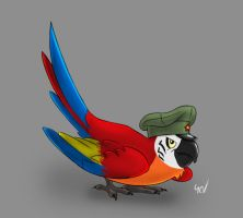 red army parrot by YohanKohenagen