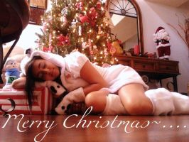 Polar bear Christmas~... by EuroPrincess