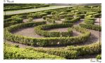 Green Maze by Quinchy