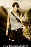 Tomb Raider 9 - Outland by Larxenne